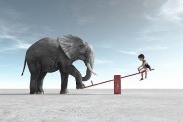TDAH difficultés poids éléphant